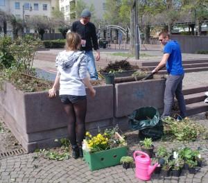 Urban_Gardening5
