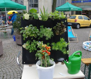 Urban_Gardening7